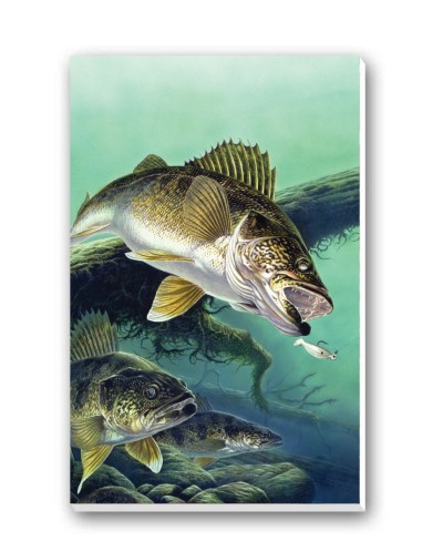 Anglers Dream Tally Sheets Playing Cards Accessory