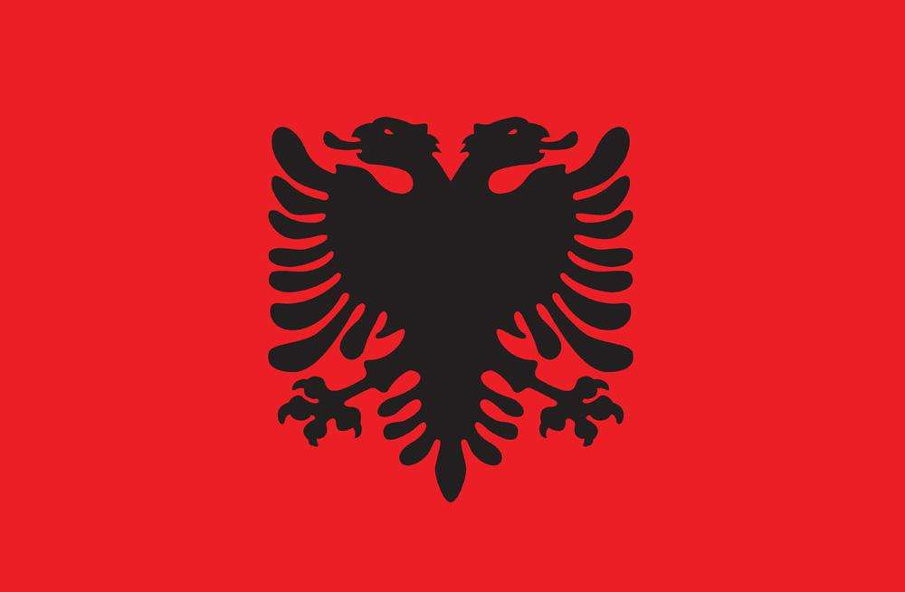 Image result for albania flag