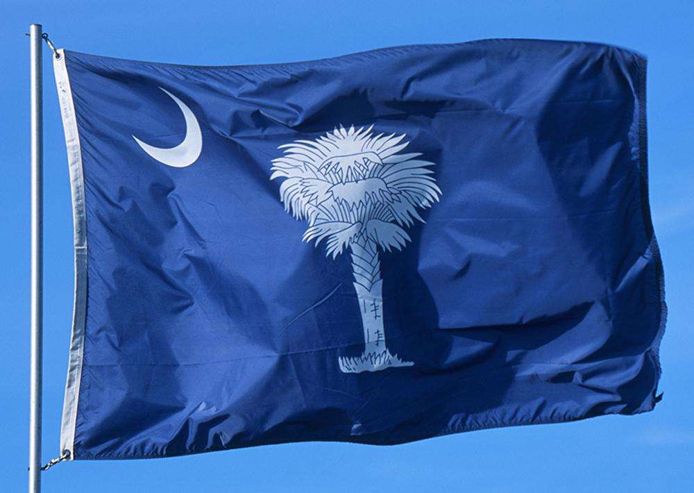 South Carolina State Flags Nylon Polyester 2 X 3 To 5 X 8