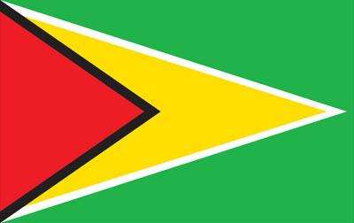 Guyana World Flag
