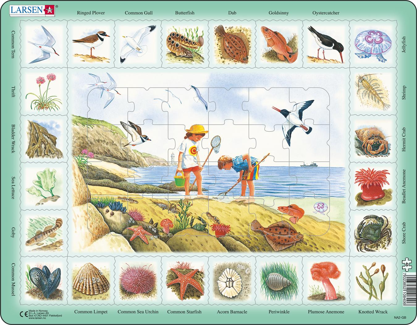 Seaside 48 Piece Children's Educational Jigsaw Puzzle
