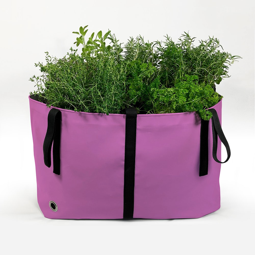 The Green Bag, Pink