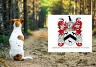 Advanced Canine Communication Online Course