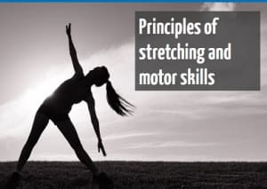 Principles of stretching and motor skills online