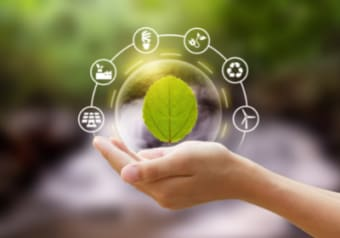 IEMA Environmental Sustainability Skills for the Workforce Online Course