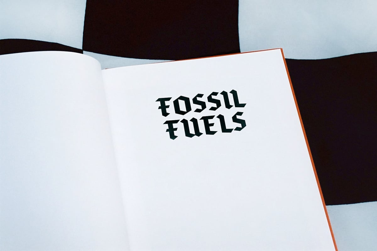 Fossil Fuels - Lloyd Stubber - Bloom Publishing