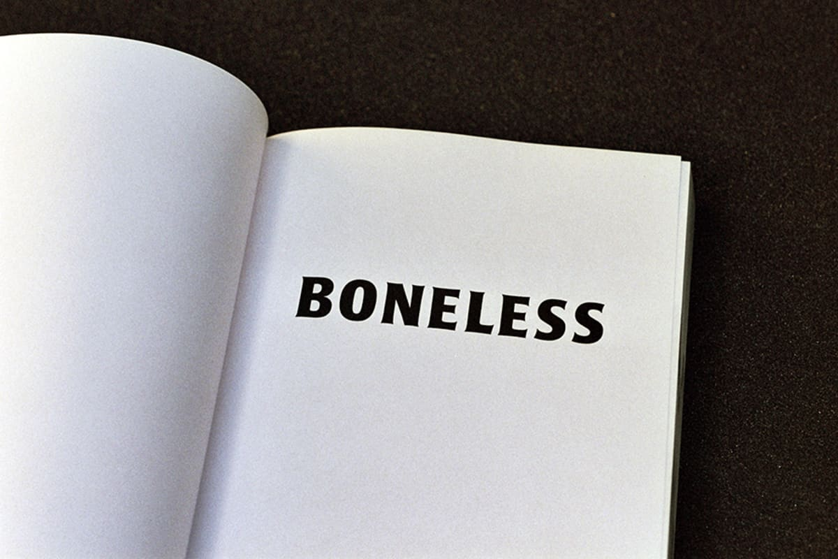 Boneless - Lloyd Stubber - Bloom Publishing