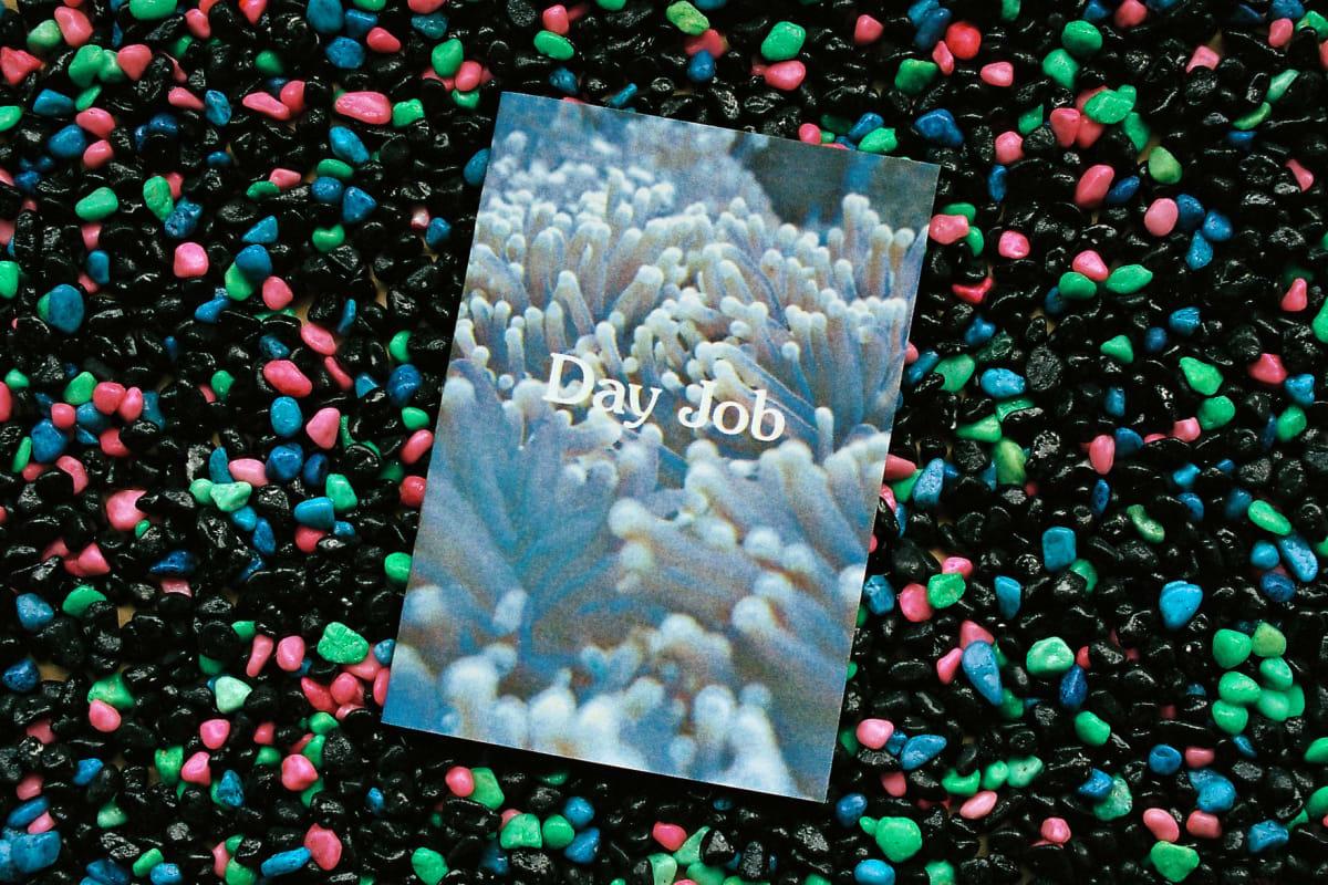 Day Job - Lloyd Stubber - Bloom Publishing