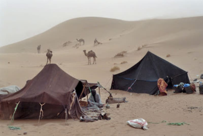 Traditional and modern Tuareg black tents in the Sahara: image from blacktentresearch.blogspot