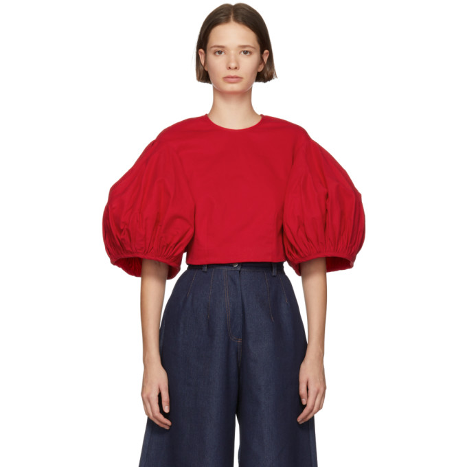 EDIT Edit Red Balloon Sleeve Cropped Blouse