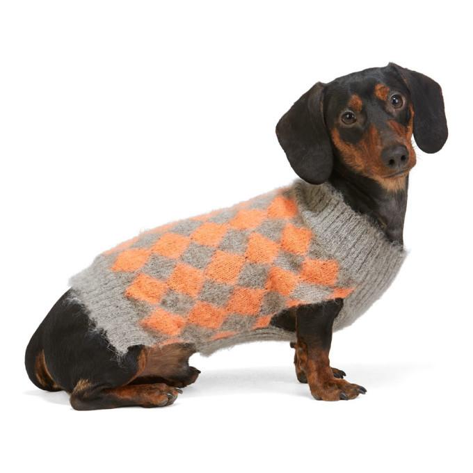 Ashley Williams Pull pour chien gris et orange exclusif a SSENSE