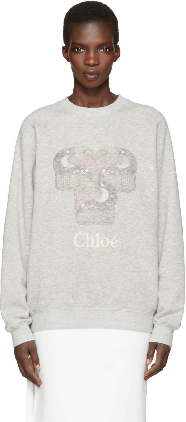 Chloe Grey Toucan Logo Pullover