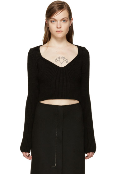 Calvin Klein Collection - Black Cropped Birita Sweater