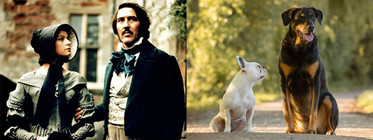 movie image of jane eyre and edward rochester with dogs that look like them