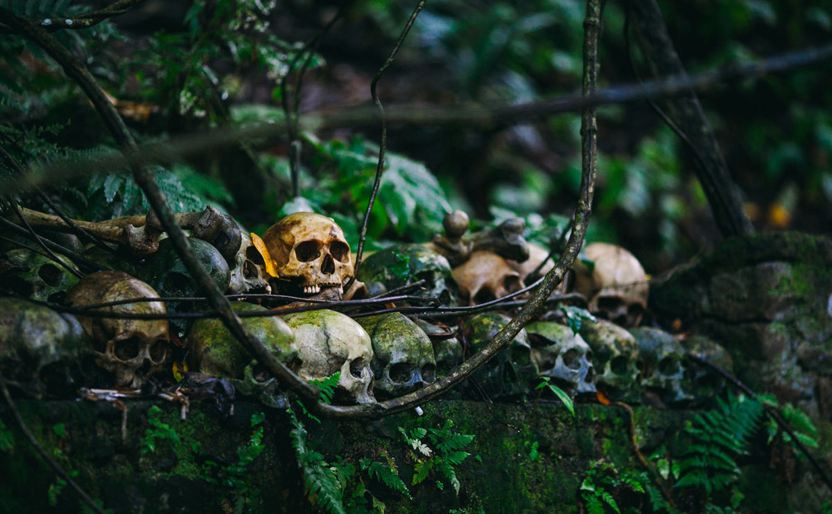 It's a Deadly Excursion Deep into the Mexican Jungle in 'The Ruins'