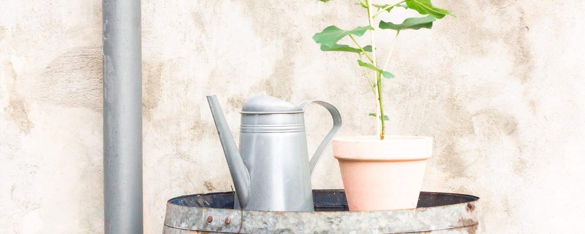 Tips til en mere bæredygtig hverdag - del 2