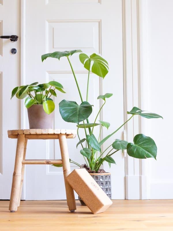Tips til en mere bæredygtig hverdag - del 1