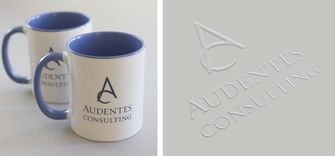 Project image 0: Audentes Consulting