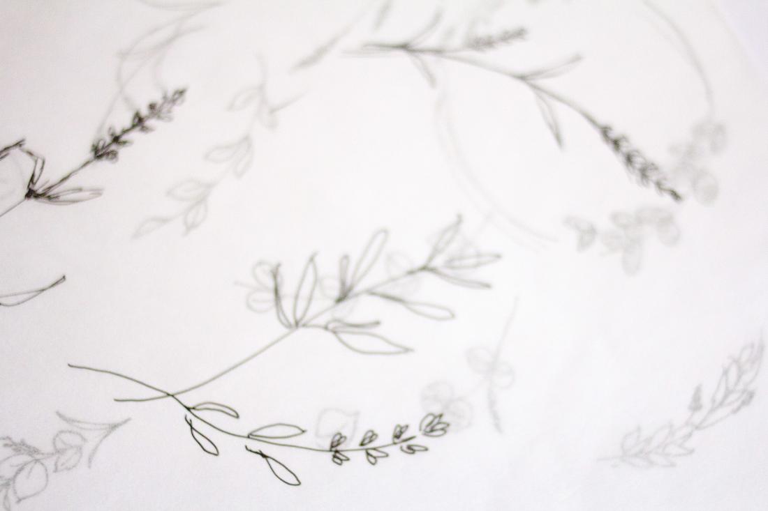 Project image 2: Botanical Skin Studio
