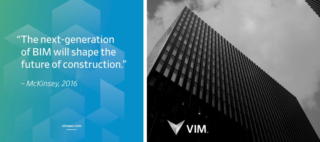 Project image 1: VIM
