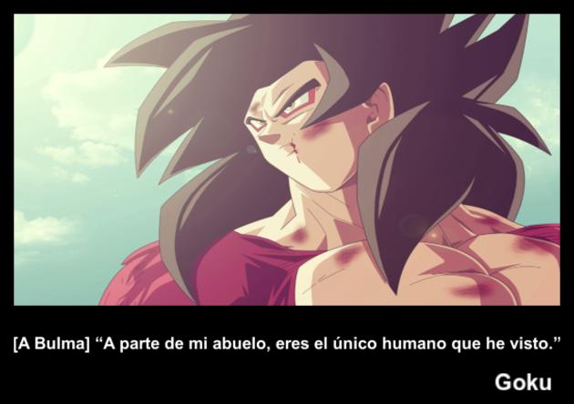 Goku   Frase Dragon
