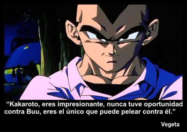vegeta   Frase Dragon Ball