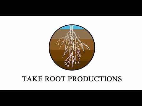 REEL - TAKE ROOT PRODUCTIONS