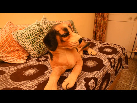 Sanskar - A short film