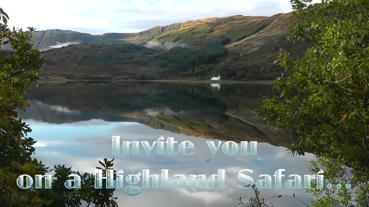 """A Highland Safari: In Search of Scotland's Big Five"" DVD Trailer"