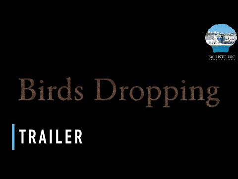 The 'Birds Dropping' Movie Trailer
