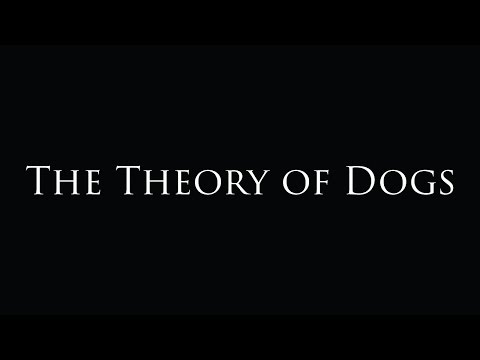 The Theory of Dogs Short Film