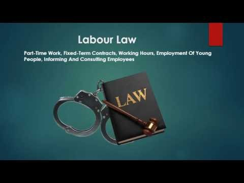 Cortney Shegerian | Employees Rights in the Workplace
