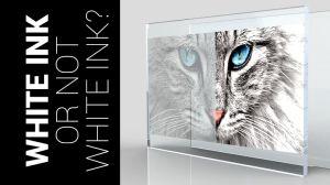 stampa su pannelli trasparenti le tue foto e i tuoi quadri personalizzati