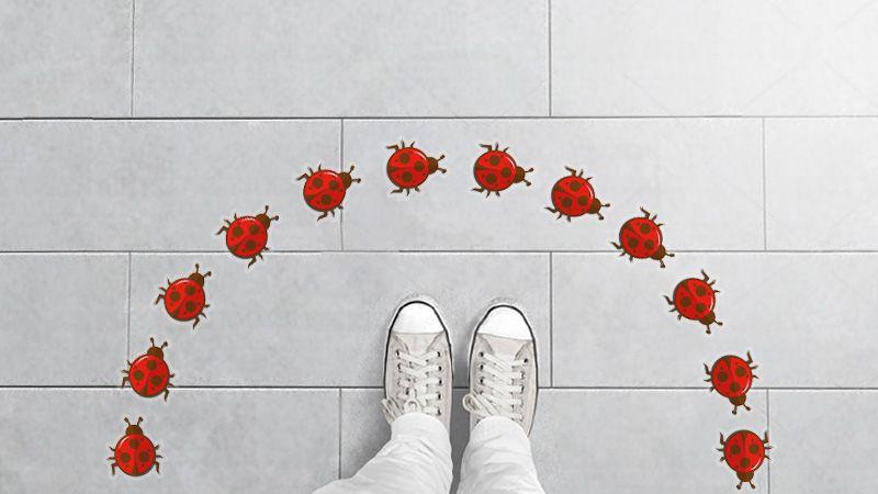 stickers adesivi per pavimenti