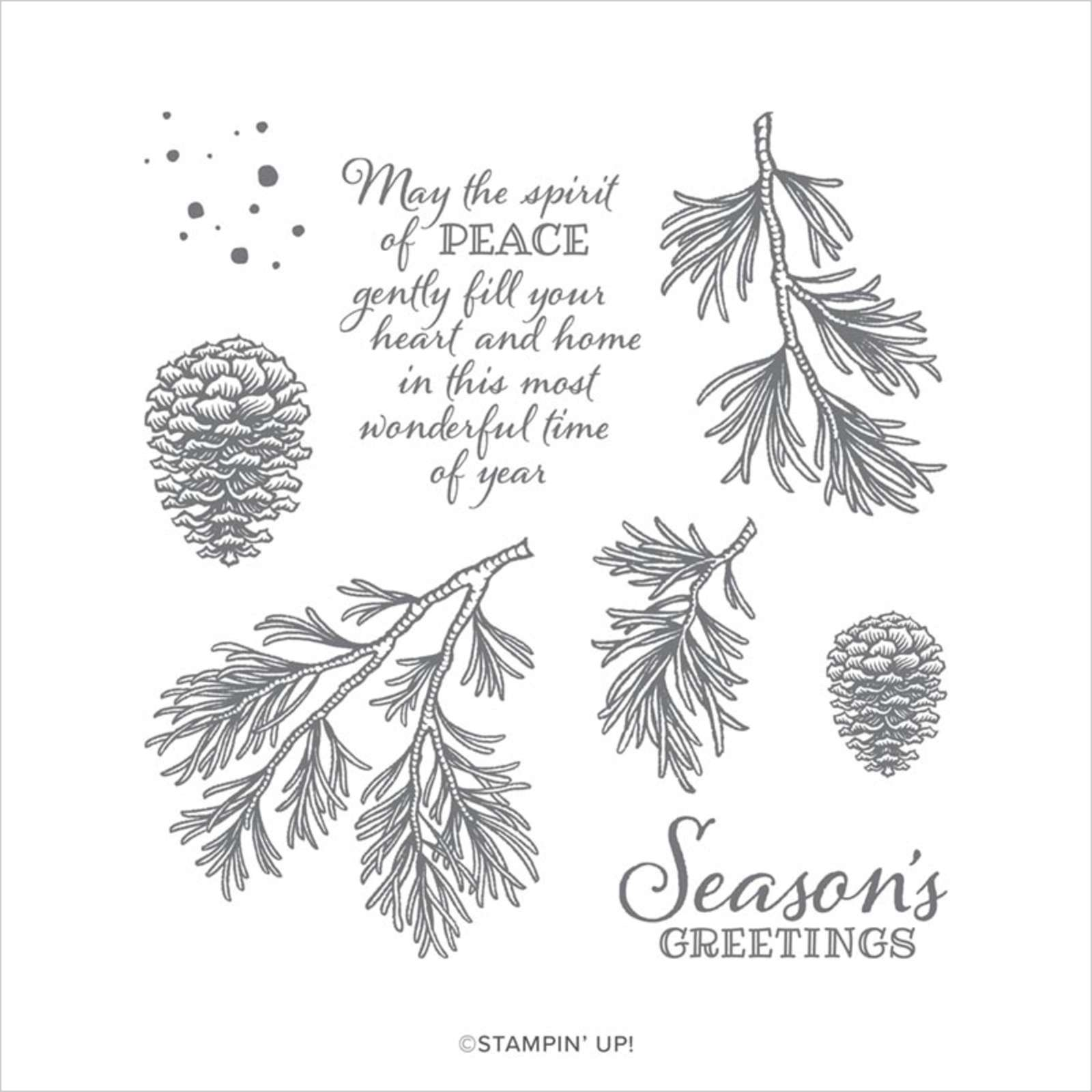 PEACEFUL BOUGHS CLING STAMP SET (ENGLISH)