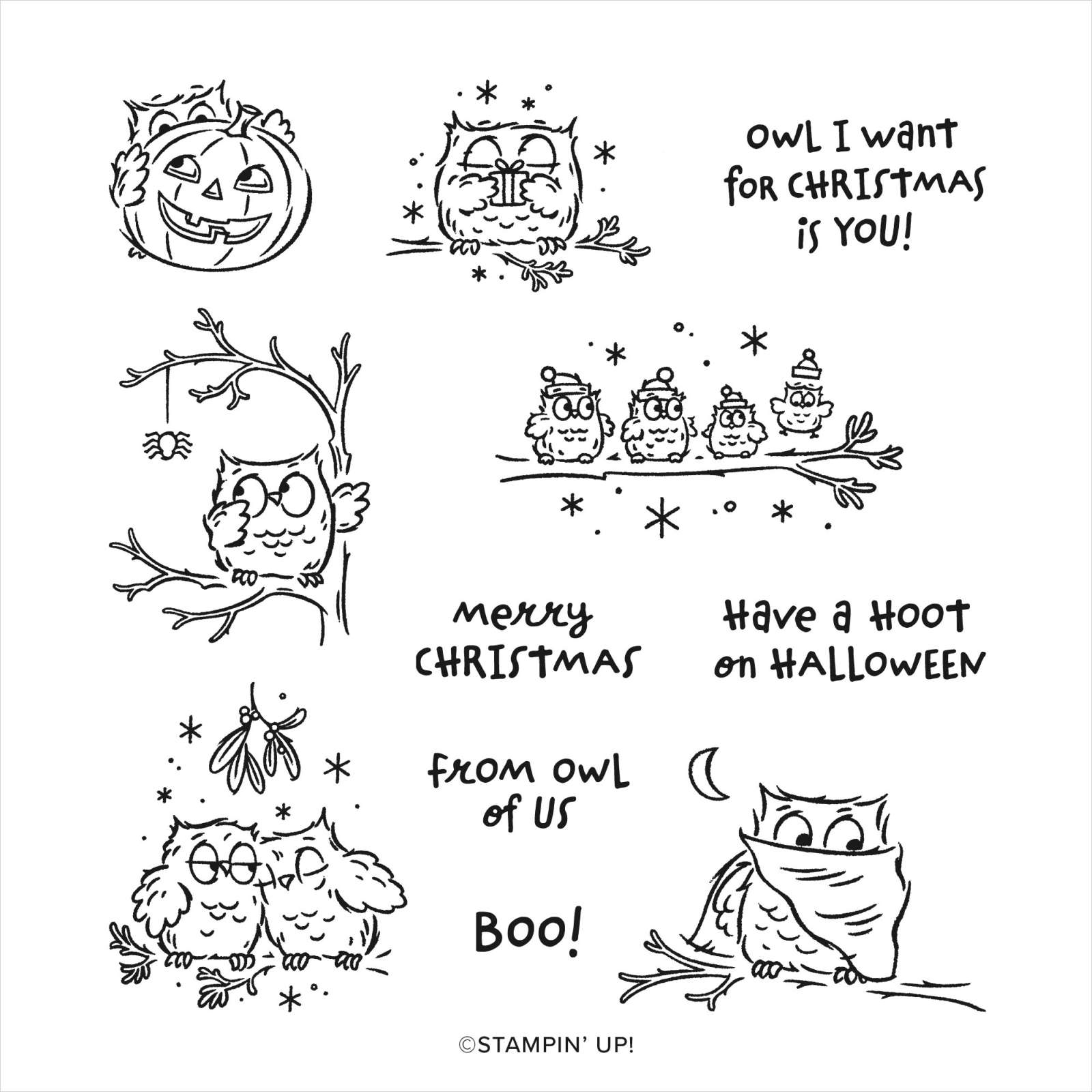 STAMP SET CLING HAVE A HOOT (ENGLISH)