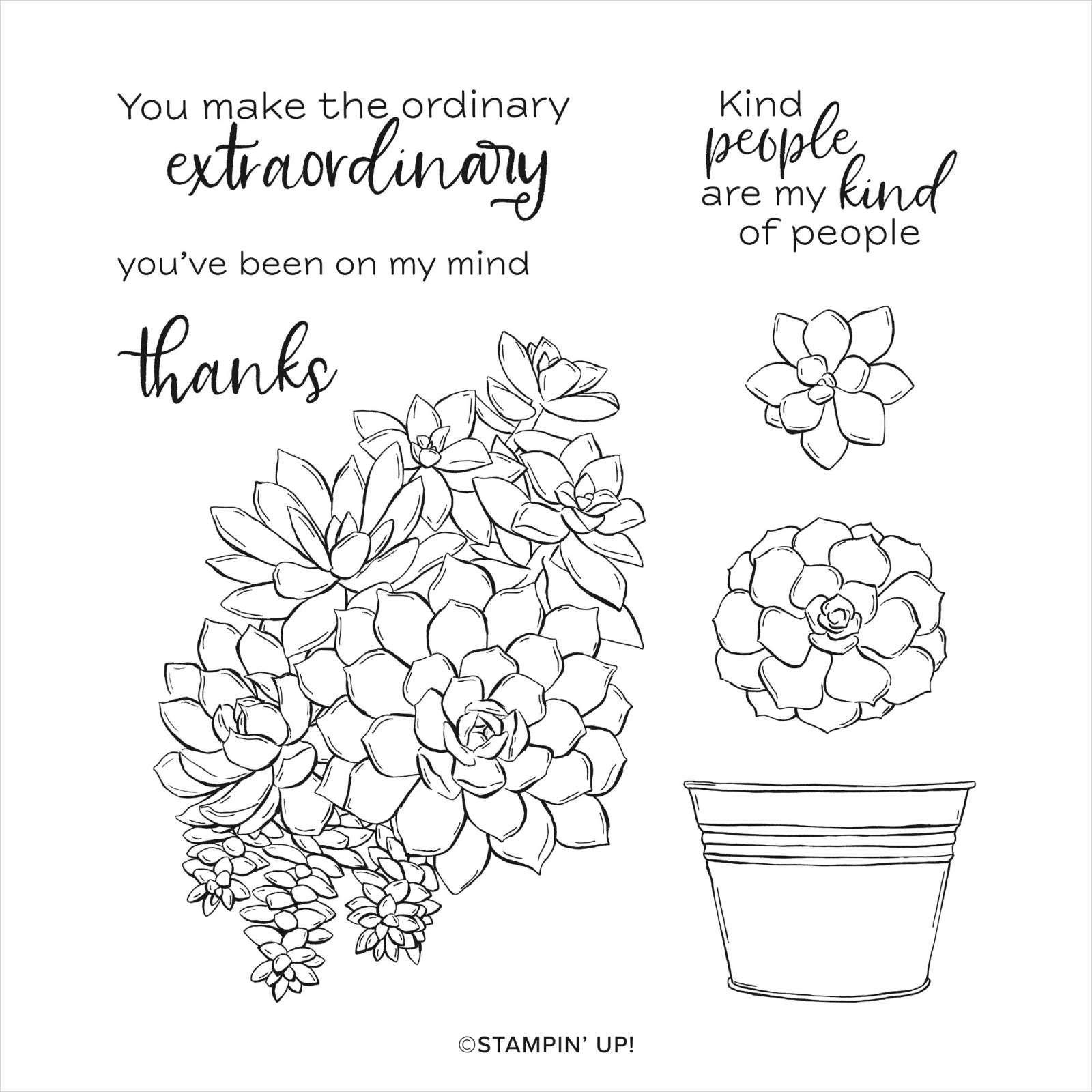 Stampin Up Simply Succulents Cling Stamp Set