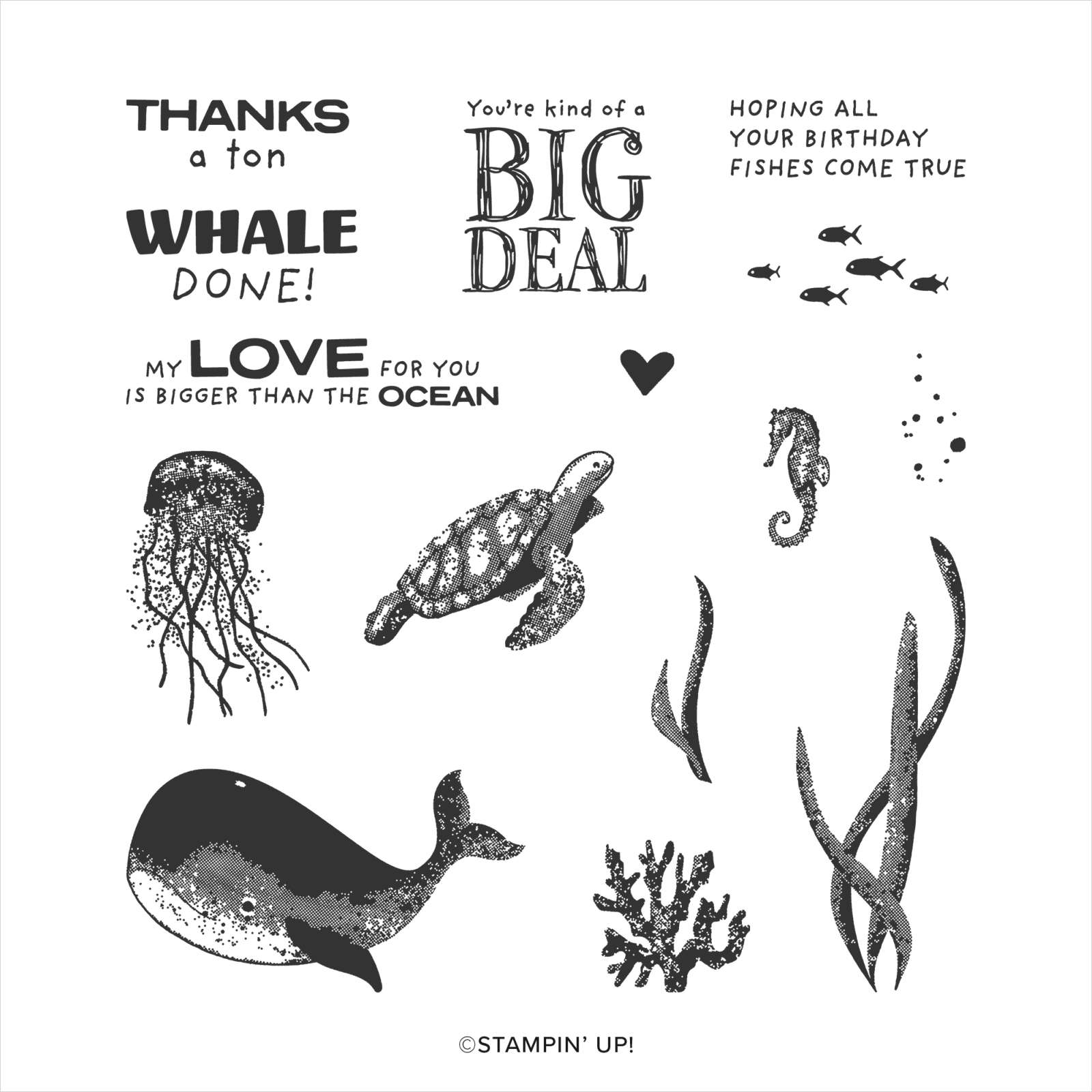 WHALE DONE PHOTOPOLYMER STAMP SET (EN)