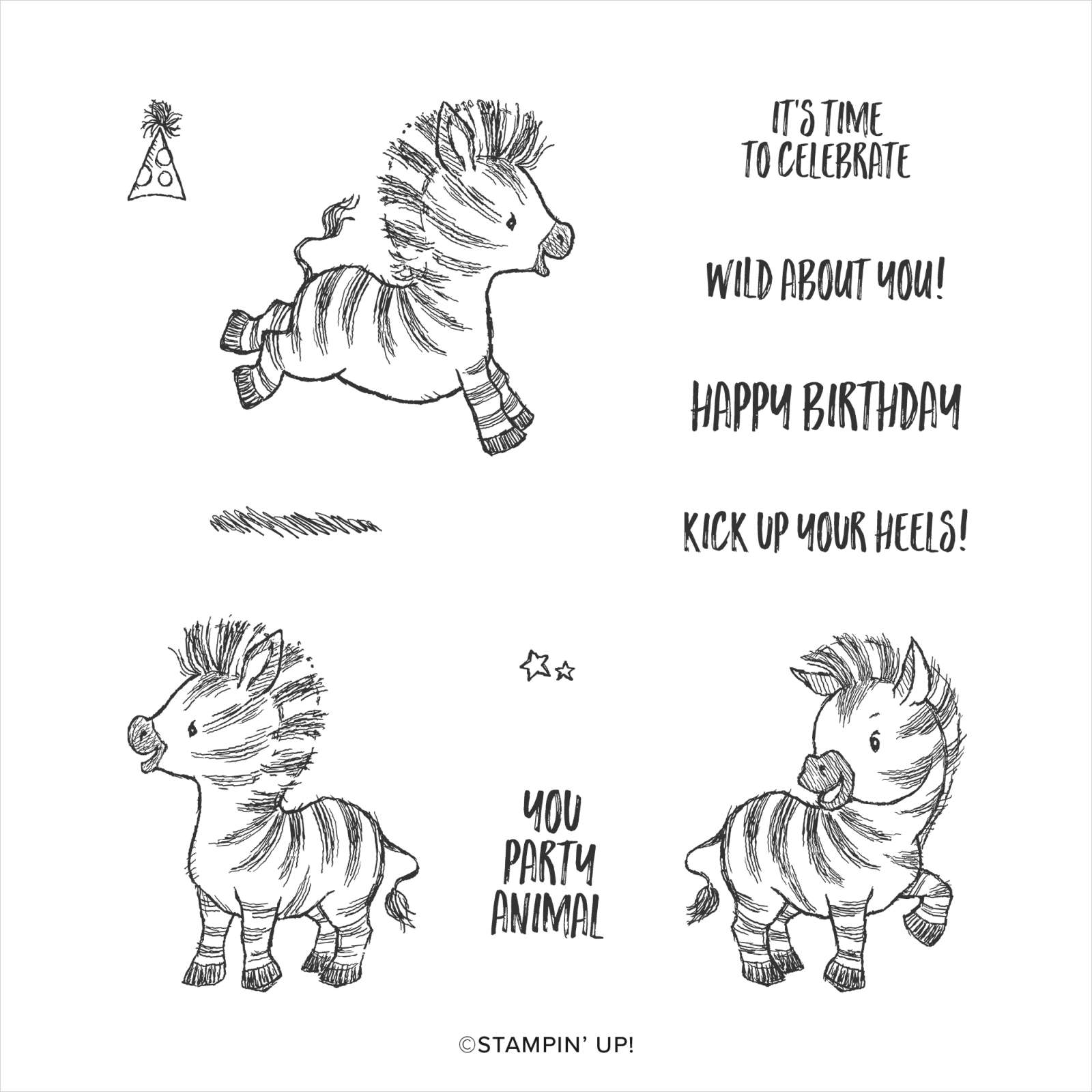 ZANY ZEBRAS CLING STAMP SET