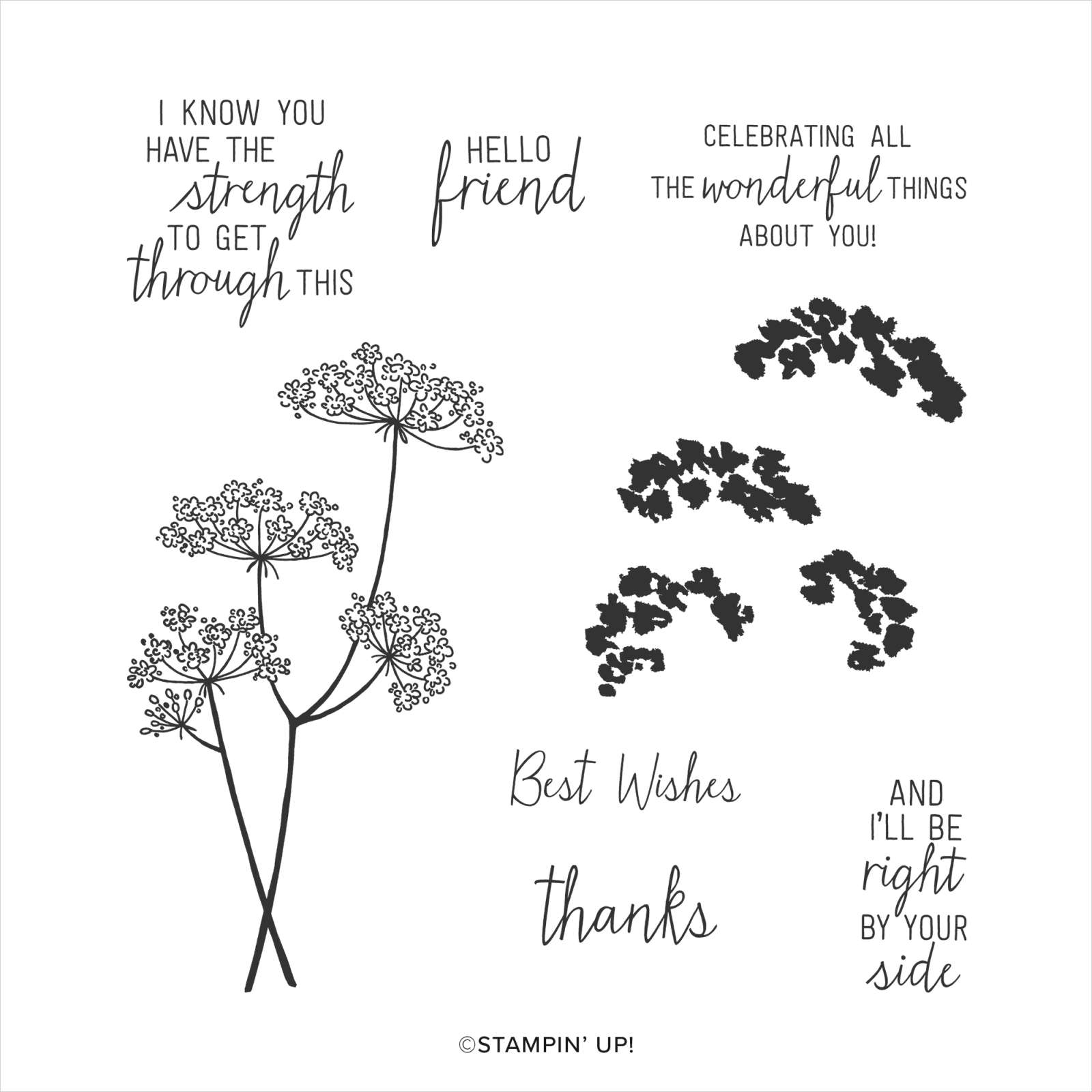 QUEEN ANNE'S LACE PHOTOPOLYMER STAMP SET #152607
