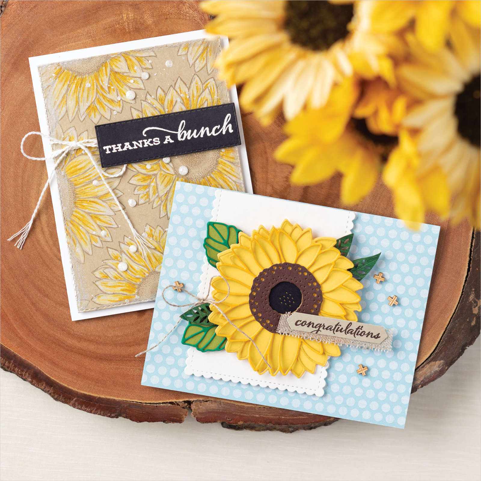 CELEBRATE SUNFLOWERS BUNDLE #154065