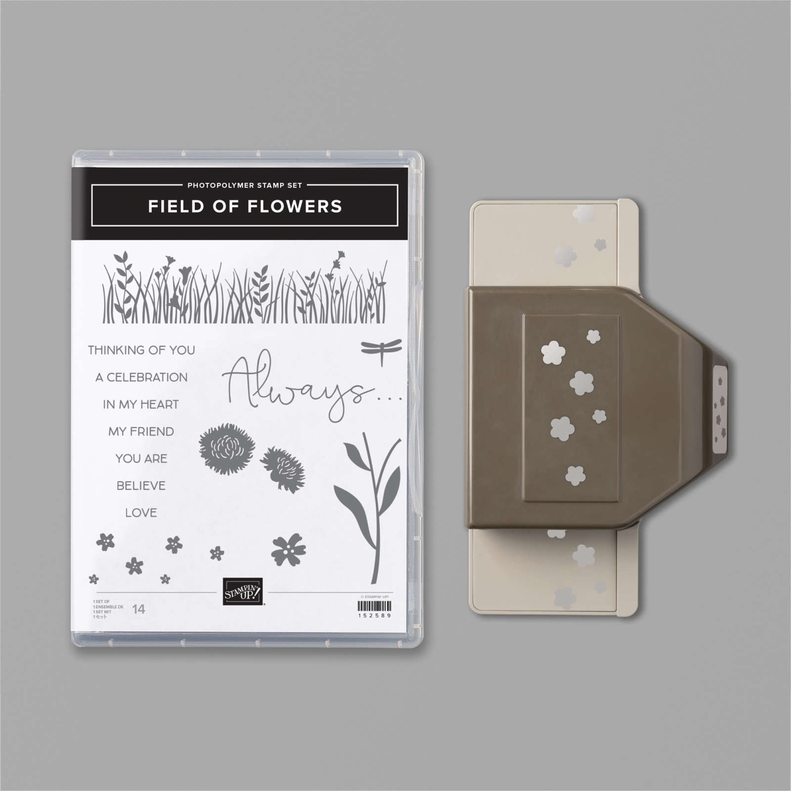 FIELD OF FLOWERS BUNDLE #154108