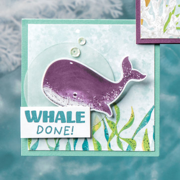 WHALE DONE BUNDLE #154053