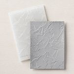 PAINTED TEXTURE 3D EMBOSSING FOLDER