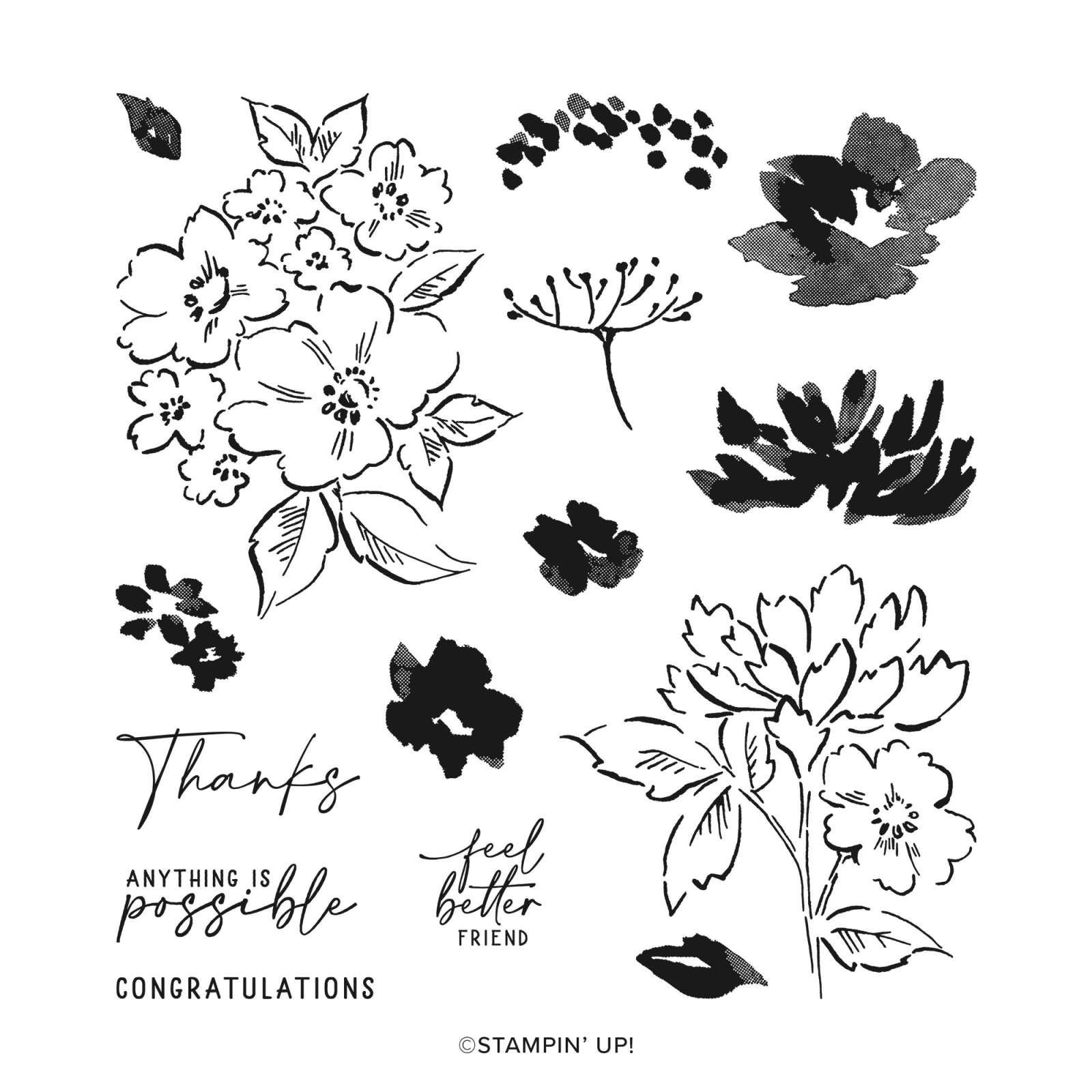 Hand-Penned Petals Photopolymer Stamp Set