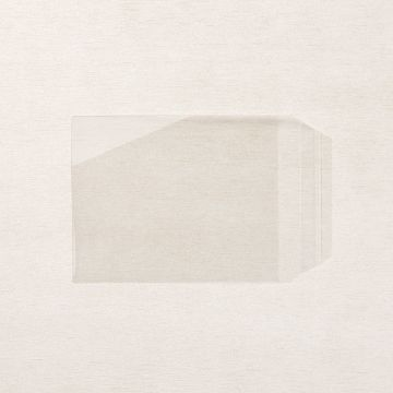 CLEAR TRANSLUCENT MEDIUM ENVELOPES