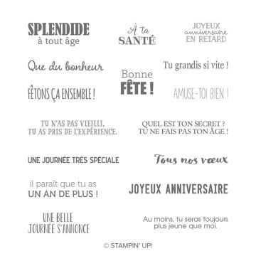 TOUT PETITS ANNIVERSAIRES CLING STAMP SET (FRENCH)