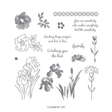 INSPIRING IRIS PHOTOPOLYMER STAMP SET