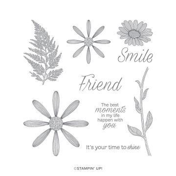 DAISY LANE CLING STAMP SET (ENGLISH)
