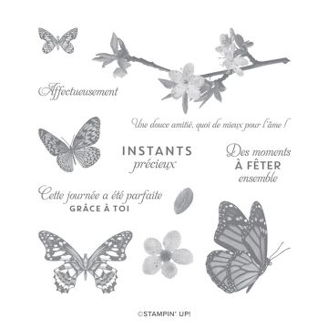 PAPILLONS ATTENTIONNÉS CLING STAMP SET (FRENCH)
